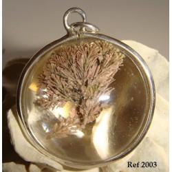 Colgante semiesfera Corallina