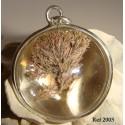 Corallina semi-spherical necklace