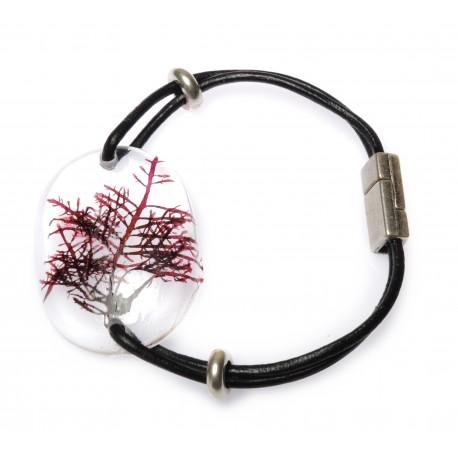 Pterocladiella bracelet