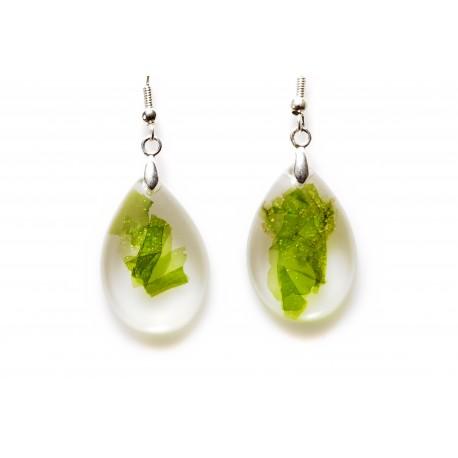 Ulva earrings