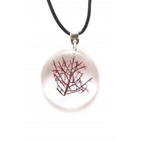 Pterocladiella short necklace