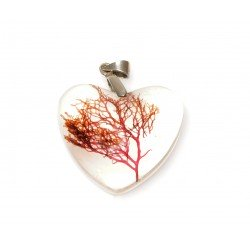 Plocamium heart necklace