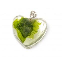 Plocamium heart necklace