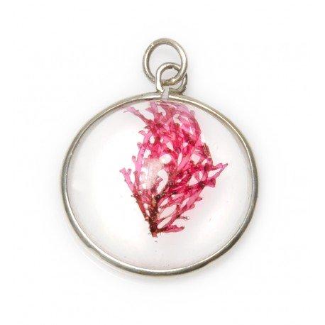 Plocamium semi-spherical necklace