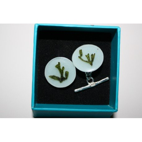 Gracilaria semi-spherical necklace