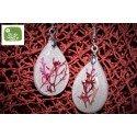 Sphaerococcus earrings